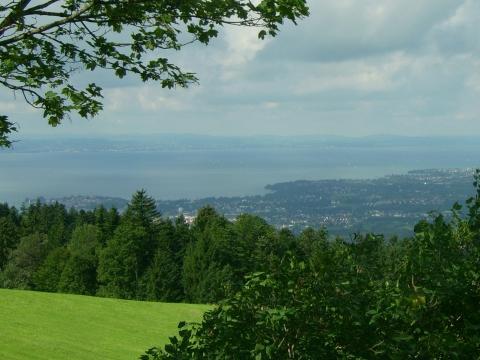 Auf dem Weg zum Pfänder - (Deutschland, Österreich, Schweiz)