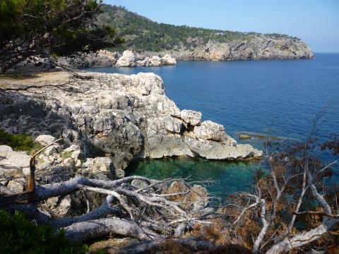 Küste zwischen Puerto Soller und Deya - (Spanien, Mallorca, Balearen)
