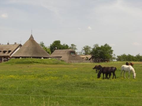 Puszta - (Reiseziel, Ungarn, Pusta)
