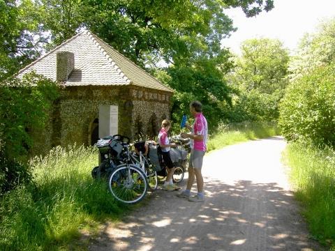 Radweg nach Wörlitz - (Deutschland, Park, Garten)