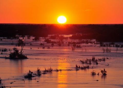 Sonnenuntergang bei Tozeur - (Reise, Asien, Südamerika)