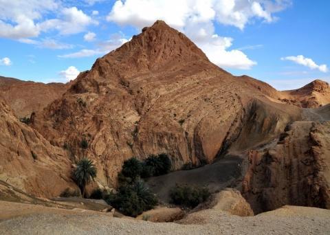 Die Oase Chebika an der Grenze zu Algerien - (Reise, Asien, Südamerika)