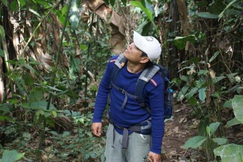 Kai auf der Pirsch im urwald - (Australien, Tiere, Schutz)