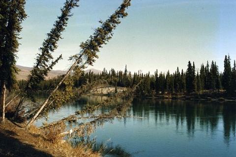 Marshsee, Yukon, Kanada - (Amerika, Kanada, Ort)