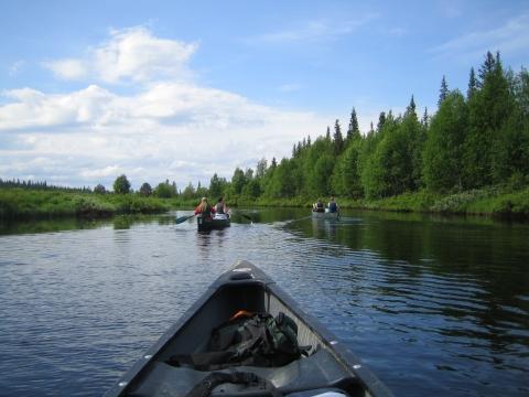 Sommer in Finnland - (Reiseziel, Sport, Natur)