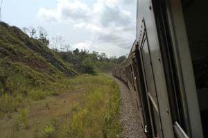 mit der Eisenbahn durch den Regenwald in Gabun - (Afrika, Tiere, Gabun)
