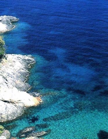 Das Wasser von Elba - (Italien, Schnorcheln, Obere Adria)