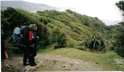 Trekking auf Chiloé - (Reise, Südamerika, Lateinamerika)