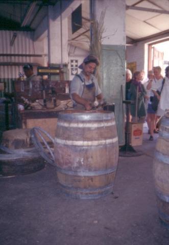 Weinanbau in Stellenbosch - (Afrika, Suedafrika, Weinregion)