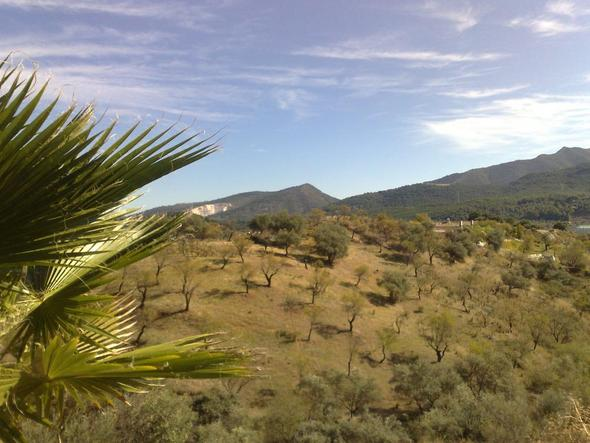Berge hinter Marbella - (Spanien, Winter, Andalusien)