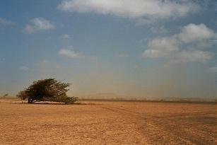 CV Sal, Sandwolke bei Espargos - (Urlaub, Afrika, Visum)