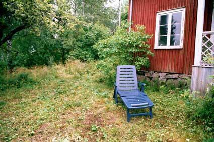 elche von der liege - (Schweden, Nationalpark, beobachten)
