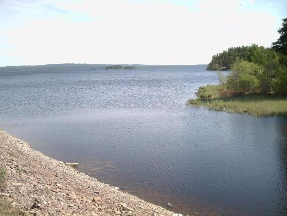 winterwald - (Sicherheit, Skandinavien, Schweden)