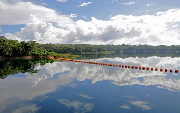 Ein Stausee vom Panama Kanal - (Mittelamerika, Impfung, Panama)