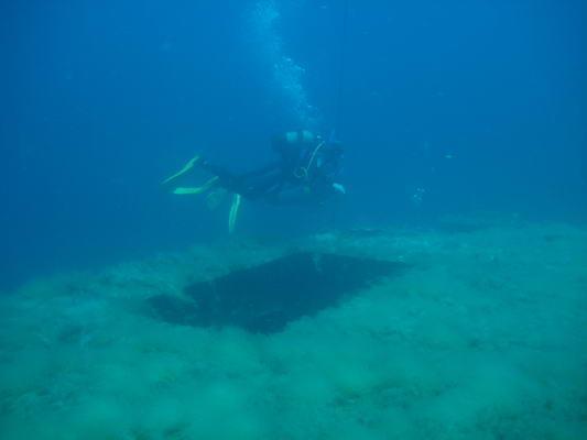 Don  Perdo - (Europa, Tauchen, Unterwasserwelt)