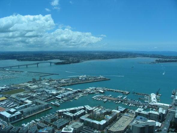 Auckland - (Kosten, Backpacker, Neuseeland)