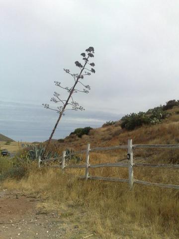 Cabo da Gata - (Spanien, Hostel, Backpacker)