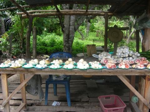 Pilzhändler CNX - (Thailand, Rundreise, Chiang Mai)