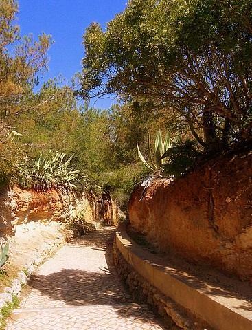 Klippenwanderweg bei Carvoeiro - (Wandern, Algarve, Weingut)