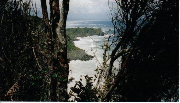 Nationalpark auf der Insel Chiloé - (Rundreise, Ort, Chile)