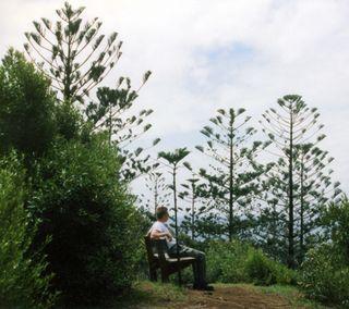 Norfolk Island - (Insel, Neuseeland, Fähre)