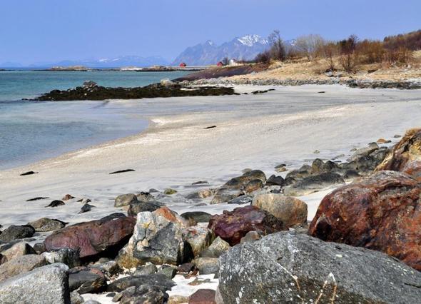 Strände auf den Lofoten - (Europa, Strand, Skandinavien)