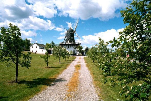beispiel 2 gleiche bilder windmühle - (Fotografie, Foto, Kurzanleitung)