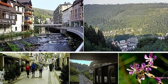 Bad Wildbad - (Deutschland, Ausflug, Natur)