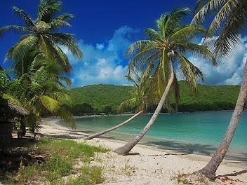 Grenadines - (Karibik, Reiseanbieter, Segelboot)