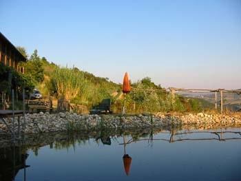 Schwimmteich - (Italien, ferienwohnung, Piemont)