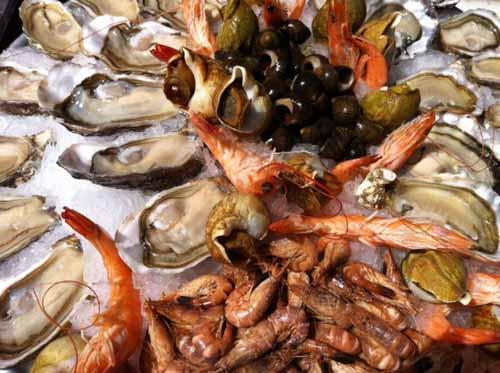 Frische Austern im Jaola - (Europa, Belgien, Brüssel)