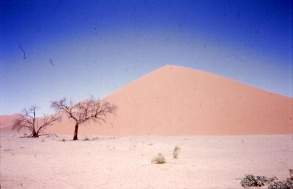 Düne in der Namibwüste in Namibia - (Natur, Landschaft, Filmkulisse)