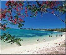 - (Mauritius, Inselurlaub, Seychellen)