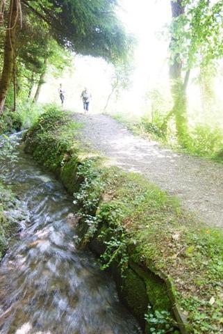 Wege am Wasser - (Italien, Wandern, Natur)