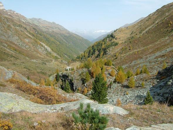 Turtmanntal - (Italien, Wandern, Natur)