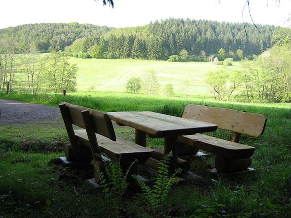 Alfbachtal am 2-Bäche-Pfad - (Deutschland, Ferienhaus, ferienwohnung)