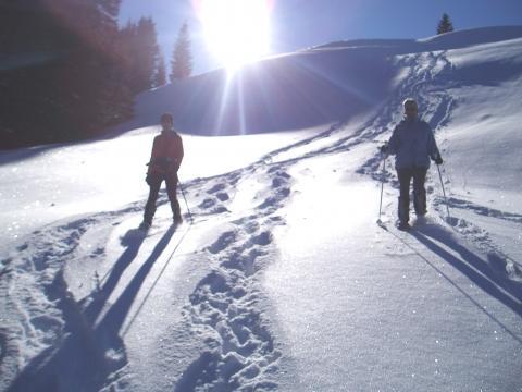 Bilduntertitel eingeben... - (Wandern, Wintersport, Schneeschuhwandern)