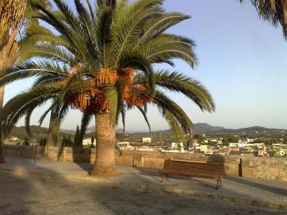 Aussicht von Arta - (Spanien, Mallorca, Cala Milor)