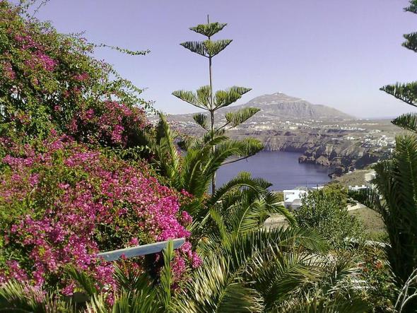 gepflegte Gartenanlage im Hotel - Santorini - (Europa, Griechenland, Hoteltipp)
