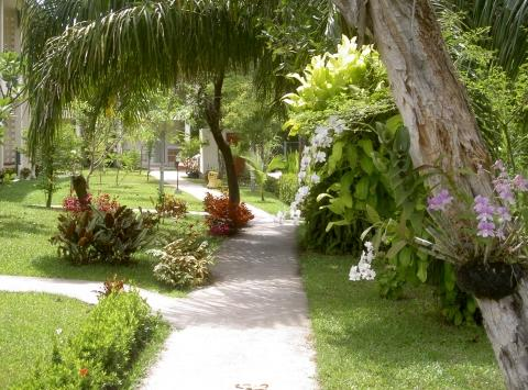 baramie residence - (Urlaub, Asien, Thailand)