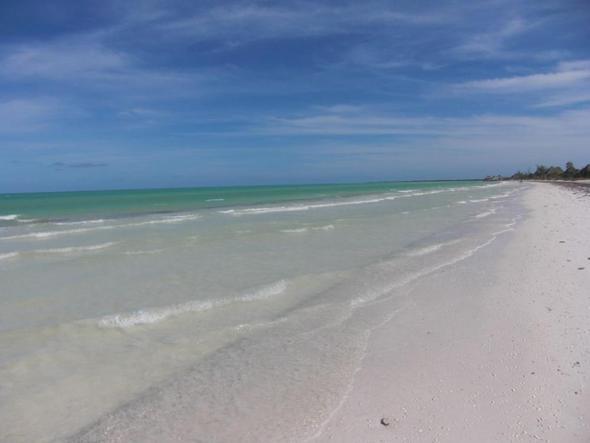der Strand  - (Insel, Lateinamerika, Mexiko)