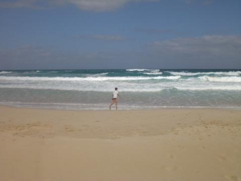 Fuerteventura - Strand vor Corralejo / Dünenstrände bei den RIU Hotels - (Spanien, Kanarische Inseln, Lanzarote)