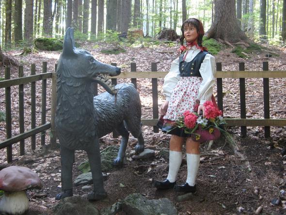 Im Märchenwald am Arber im Bayerwald. - (Deutschland, Süddeutschland, Wald)