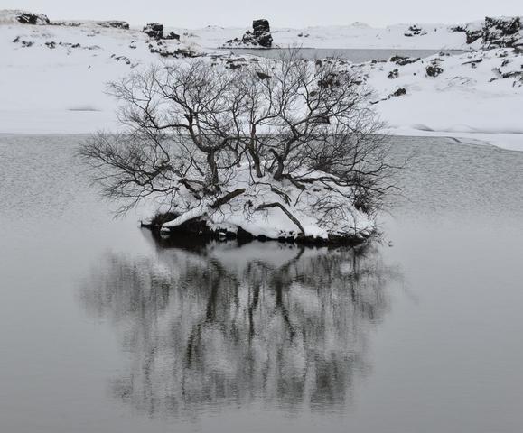 Island im März - (Städtereise, Island, Reykjavik)
