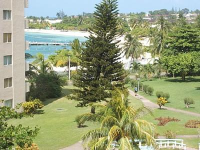 strand in ocho rios - (Unterkunft, Strand, Karibik)