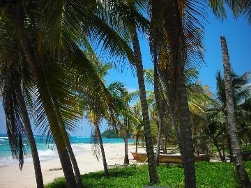 strand in Port antonio - (Unterkunft, Strand, Karibik)