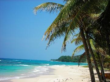 strand in Nähe port antonio - (Unterkunft, Strand, Karibik)