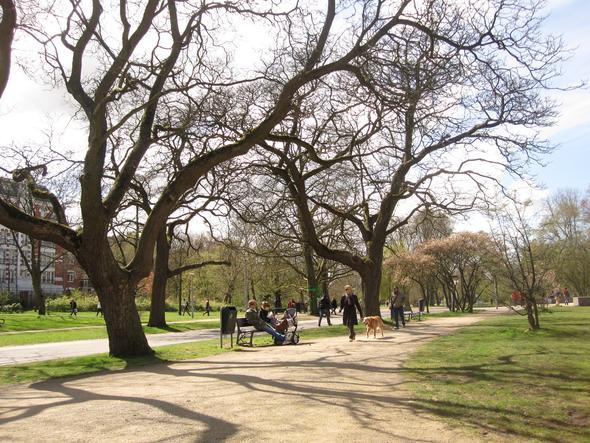 Vondelpark Anfang April  - (Städtereise, Niederlande, Holland)