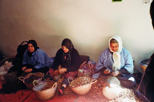 Cooperative - (Afrika, Marokko, Nordafrika)