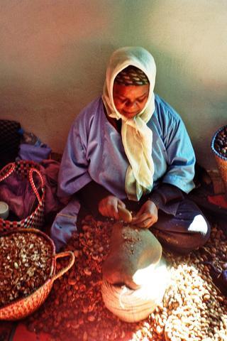 Cooperative2 - (Afrika, Marokko, Nordafrika)
